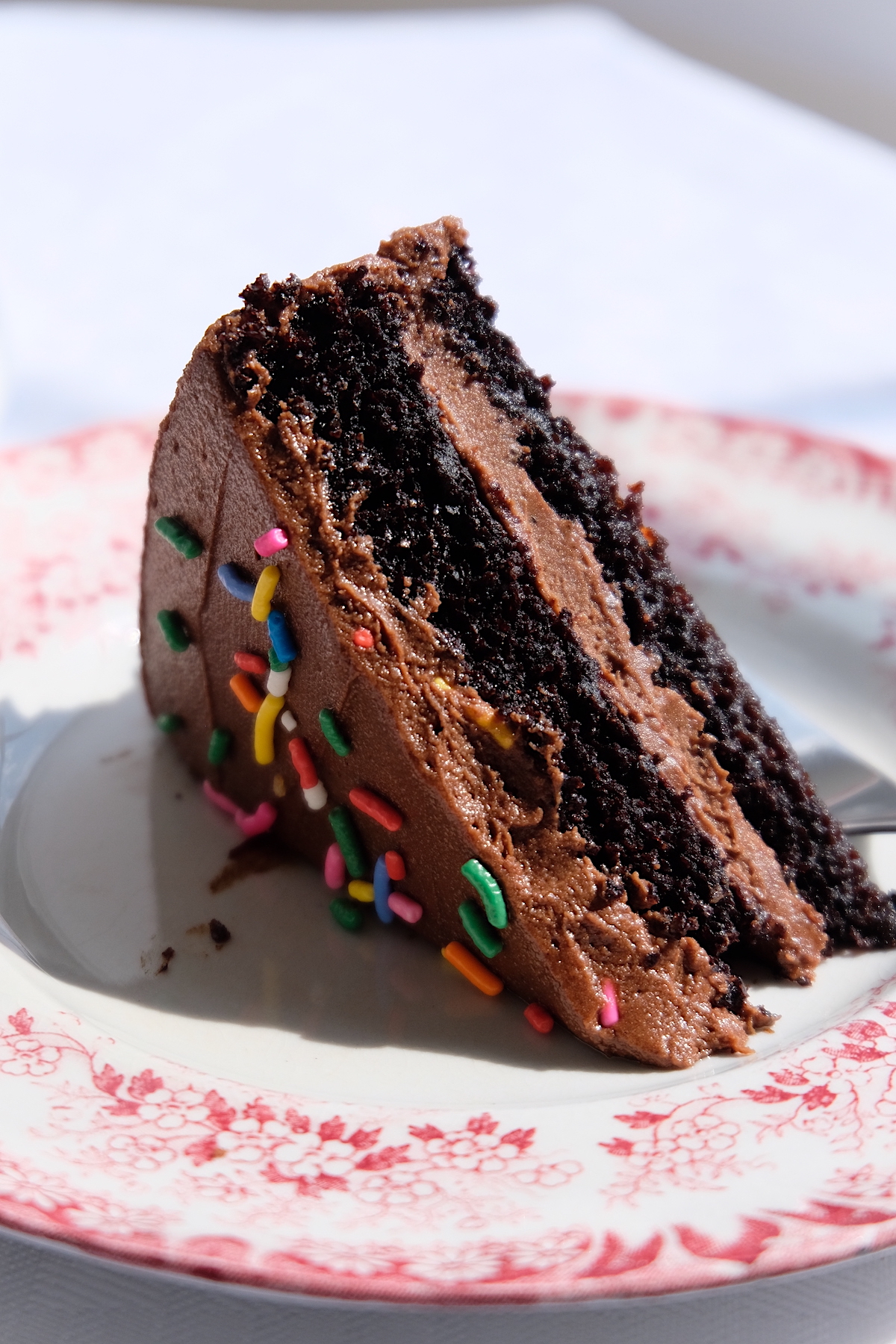 A slice of delicious-looking chocolate cake with chocolate frosting and colorful sprinkles on a plate.