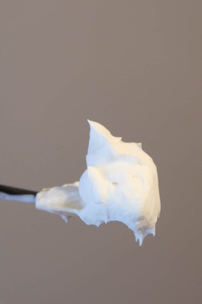 Vegan Cool Whip Vegan Whipped Cream Recipe