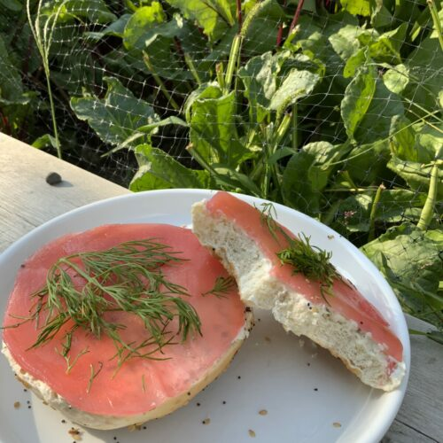 Vegan salmon made from beets on a cream-cheese bagel, garnished with dill, in front of a garden.